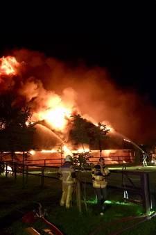 Duizenden varkens omgekomen bij grote brand in stallen in Agelo