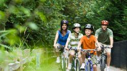Fietsexpert geeft advies bij de aankoop van een fiets: deze modellen zijn hun geld waard