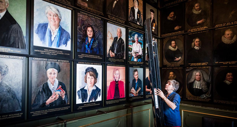 Corrie van Maris vervangt oude portretten en hangt nieuwe vrouwenportretten op in de Senaatskamer van de Universiteit Leiden.  Beeld Freek van den Bergh