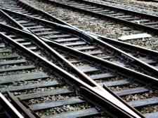 Spoorfanaat wil met petitie treinverbinding tussen  Utrecht en Breda afdwingen