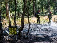 Bosbrand in Hilvarenbeek, brandweer heeft vuur snel onder controle
