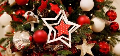Alle ballen de boom uit voor een fijne kerst voor slachtoffers van huiselijk geweld