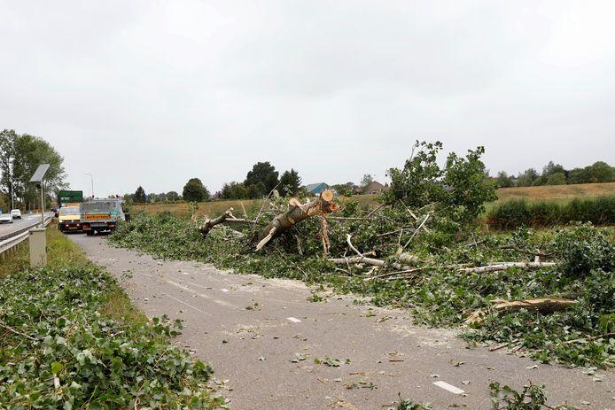 Langs de N264 tussen Oeffelt en Gennep waaiden drie bomen om door storm Francis.