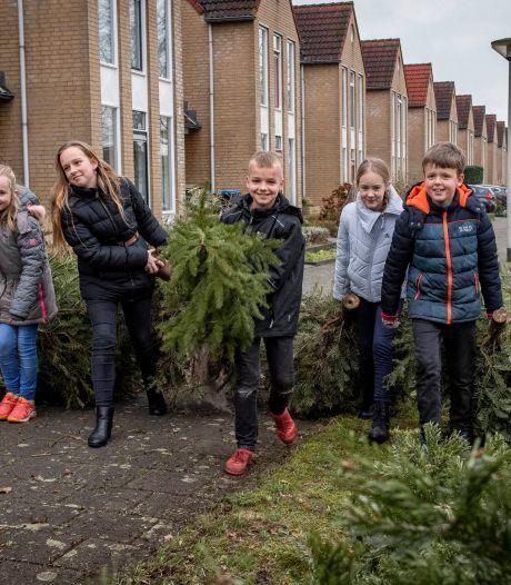 Hier moet het geld vandaan komen: weg kerstboominzameling, weg bloembakken en hertenkamp Halsteren