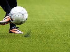 VB Projects verwarmt velden van Feyenoord