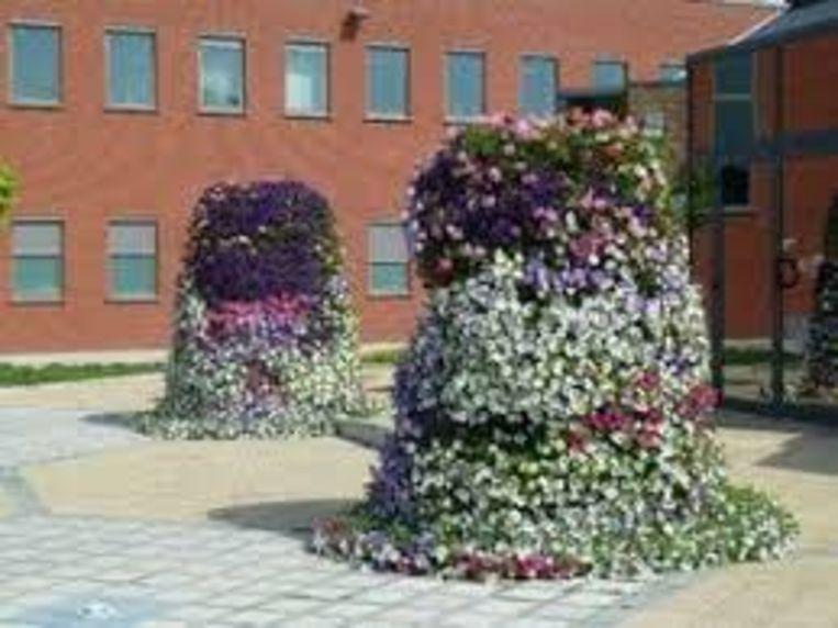 Bloemen moeten het straatbeeld een kleurrijk uitzicht geven