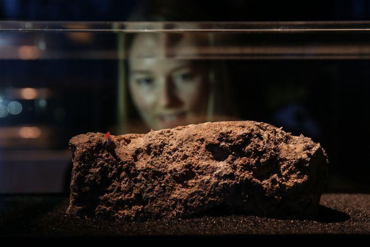Een klein restant van de Londense vetberg werd later tentoongesteld in een museum.