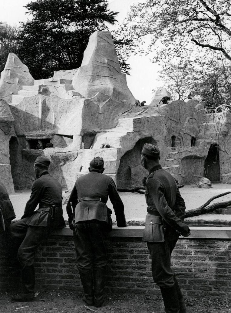 Duitse soldaten op verlof in Artis in Amsterdam. Beeld null