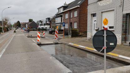 Geen bussen op Denderhoutembaan door wegenwerken