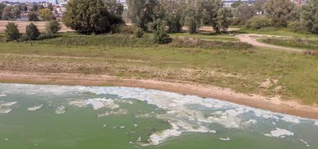 Niet zwemmen! Blauwalg in nevengeul onder John Frostbrug in Arnhem