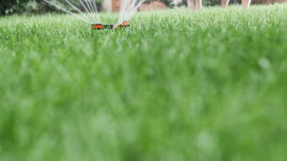 Mogen we morgen ons gras nog sproeien? Droogtecommissie beslist vandaag