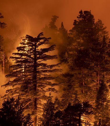 Les dix plus grosses catastrophes climatiques de 2020 ont coûté plus de 122 milliards d'euros