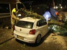 Auto beschadigd door de storm? Zo gaat de verzekering er mee om