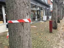 'Het volk wil geen kap bomen in Marktstraat'