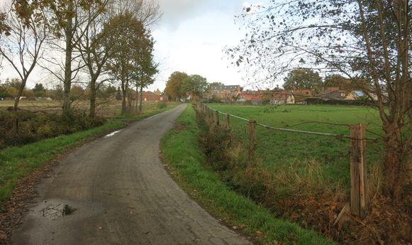 De gemeente Malle wil ook in de Voetbalstraat ledverlichting.