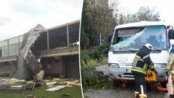 LIVE: Storm houdt lelijk huis: dode in Waals-Brabant, boom op schoolbusje in Kontich, voetbalkantine weggewaaid