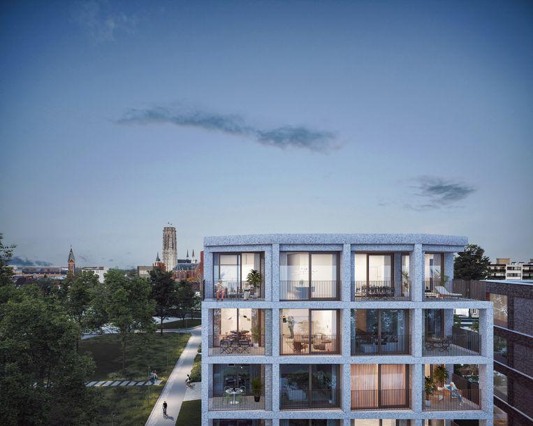 De appartementen met terras.