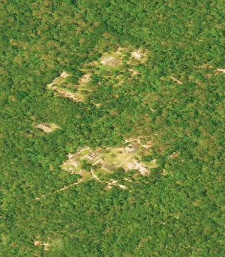 Duizenden Maya-bouwwerken ontdekt onder de dichtbegroeide jungle