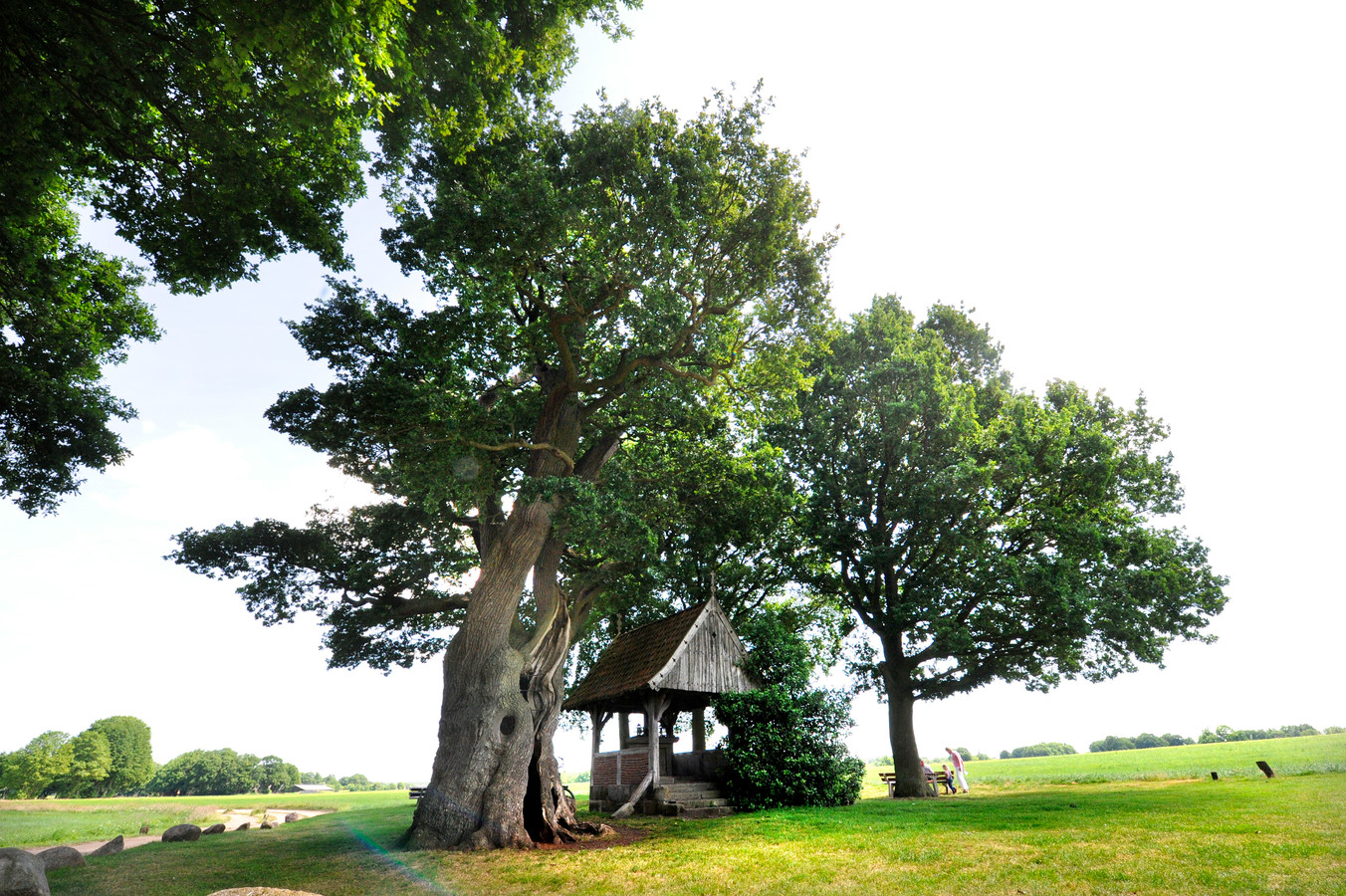 De Kroezeboom in Fleringen, op 1 september locatie van de Pancratiusdag.