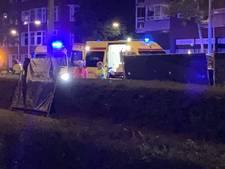 Vrouw en hond overleden bij ongeluk op Gordelweg, automobilist aangehouden
