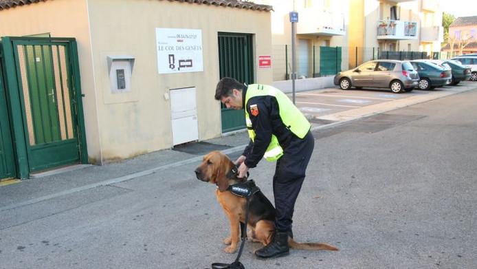 Jupiter met zijn baasje bij de politie, Bruno Mourier