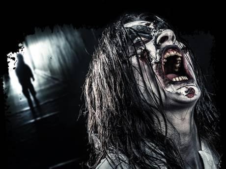 Avonturenpark-directeur met dood bedreigd door horrorevenement