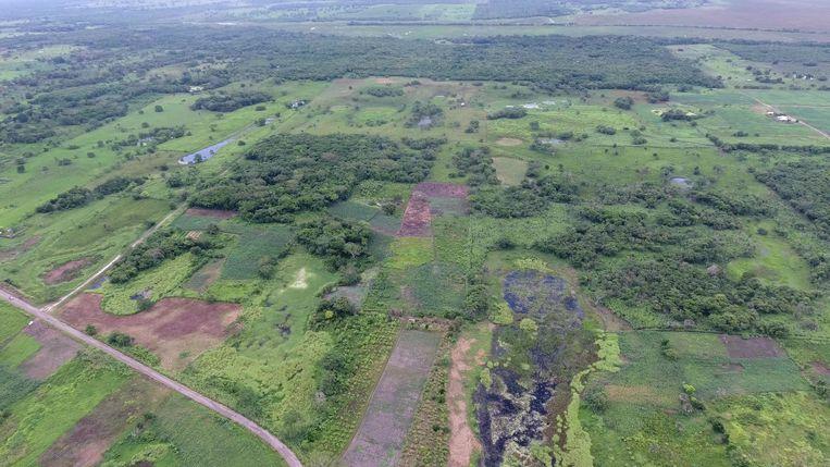 Overzicht van vindplaats Aguada Fénix. Beeld Takeshi Inomata