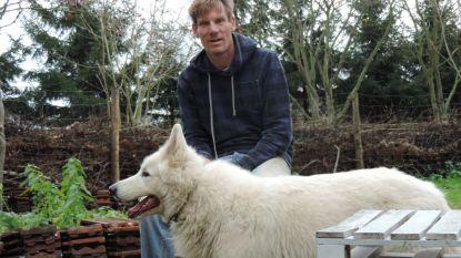 Carl helpt (jonge) honden op weg met spel en socialisatie: proeven tijdens wintersneukelwandeling op zondag 16 december