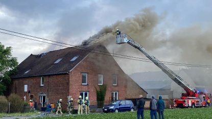 Felle brand in hoeve in Herne: vlammen slaan door dak