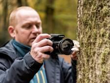 SP eist raadszetel terug van Rob Molenkamp: 'Ongepast en SP onwaardig'