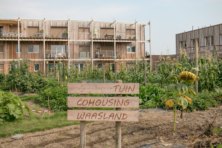 De bewoners van Cohousing Waasland, die duurzaamheid heel hoog in het vaandel dragen, wonen al meer dan een jaar in de nieuwe wijk.