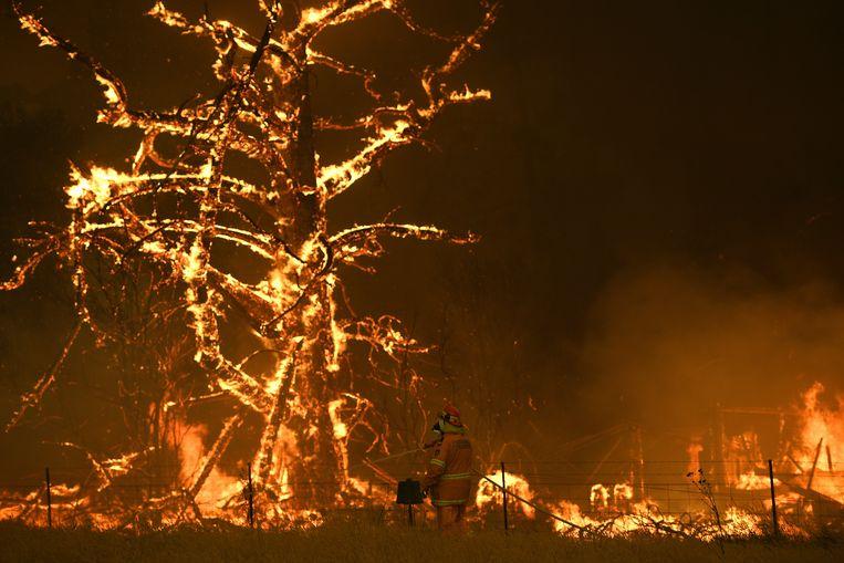 Meer dan 3 miljoen hectare bos ten noorden ging al in vlammen op, zegt de landelijke brandweer. Acht mensen zijn om het leven gekomen, onder wie twee brandweervrijwilligers