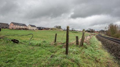 """Groen verzet zich tegen bouw van wijk met 48 huizen op grens van Eine en Heurne: """"Blijf van open ruimte af, want er is in onze stad geen nood meer aan nieuwe woningen"""""""