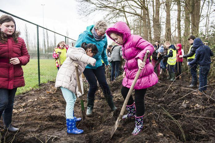 De leerlingen van Mater Dei en Klim Op planten bloesem- en besdragende planten.