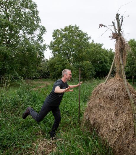 Levende kunst met 28 bomen in de hoofdrol in de 'raapgaard' in Est
