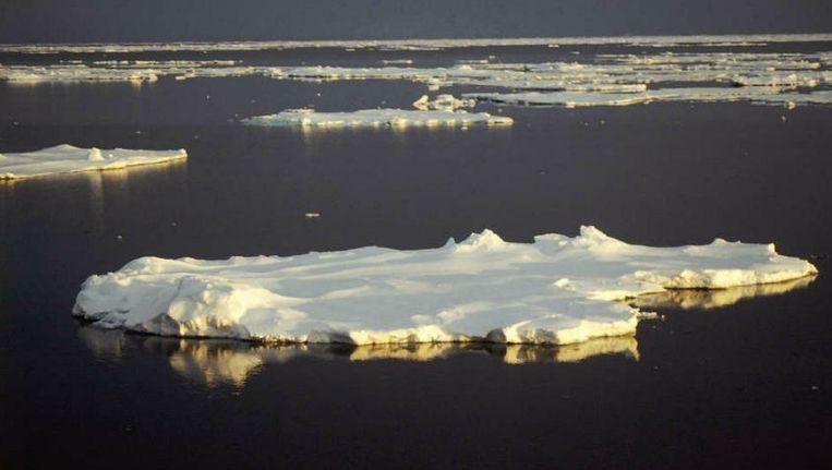 Het smeltende landijs van Antarctica koelt het zeewater af, waardoor dit sneller bevriest. Beeld Richard Bintanja
