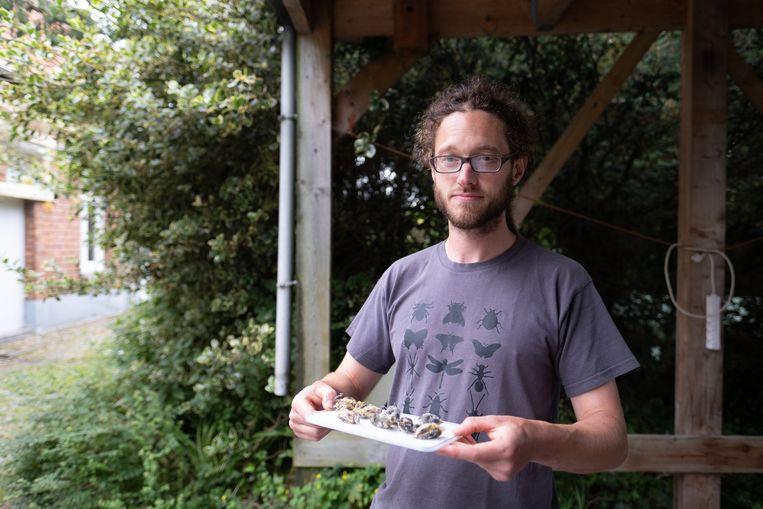 Bert Van de moortel stootte op een hele nest dode mezen.