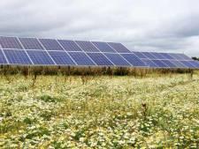 Groen licht voor eerste zonnepark van Ermelo