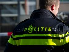 Politie over man die dutje doet op parkeervak in Wielwijk: Nam veel drinken met dit weer iets te letterlijk