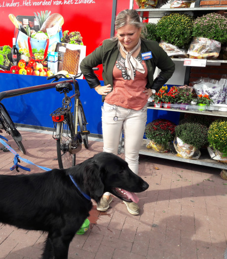 Hond gaat op eigen houtje boodschappen doen in Groesbeek