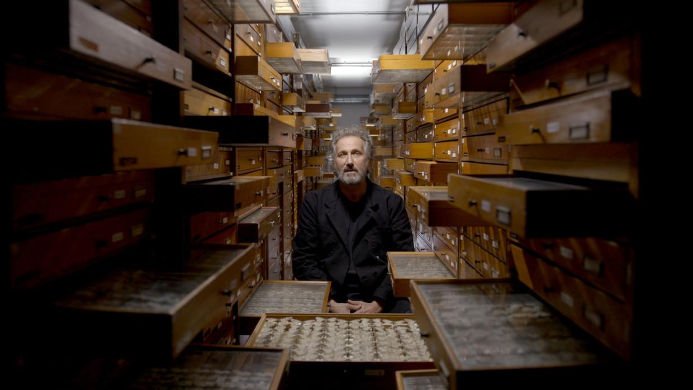 Acteur Marcel Musters bij vlinderverzameling in de toren van Naturalis.