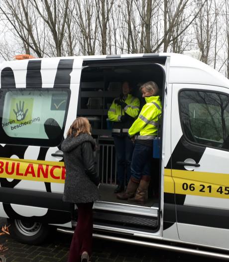 Dierenambulance vraagt om hulp in Hellendoorn en Nijverdal