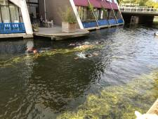Vijftal slaagt in missie en zwemt hele Rotte in één dag