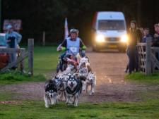 Warm gevoel voor sledehonden in Kuinderbos