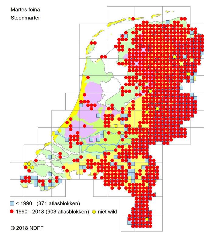Het verspreidingsgebied van de marter is vooral geconcentreerd in het noorden en oosten van Nederland.