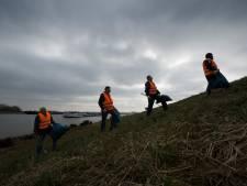 Honderden inwoners Lingewaard maken uiterwaarden schoon