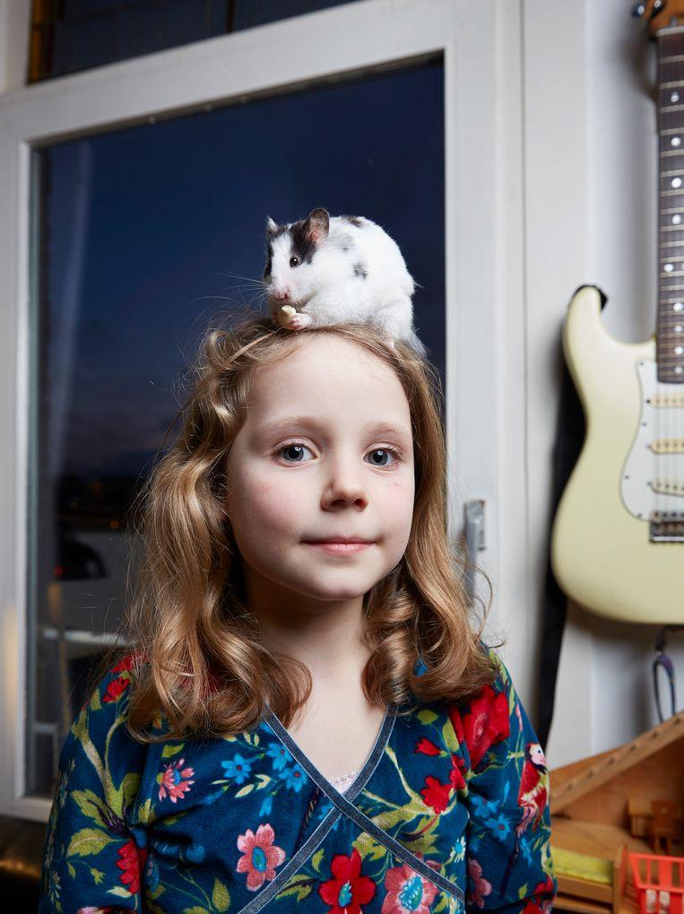 Syrische hamster Pluisje (7 maanden), Centrum. Beeld Isabella Rozendaal