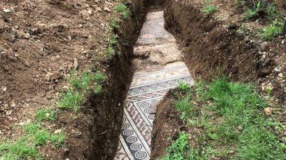 Archeologen ontdekken eeuwenoude mozaïek onder wijngaard in Italië
