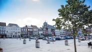Truienaren kunnen voortaan zelf aangeven waar er een boom moet komen: Stadsbestuur wil verder vergroenen