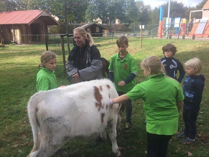 De Kinderboerderij Uden zou graag beheerder Caty Hoek in dienst nemen, maar de gemeente heeft daar geen geld voor.